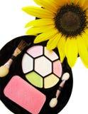 set solros för härlig cosmetic Royaltyfri Bild