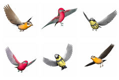 Set of songbirds - 3D render Stock Photos