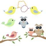 Set sowy i ptaki z mową gulgocze Obrazy Stock
