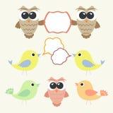 Set sowy i ptaki z mową gulgocze Zdjęcia Stock