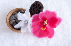 A set of spa. Orchid, lotus, and the stones Stock Images