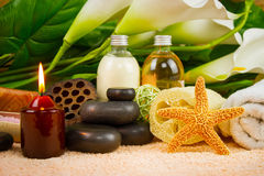 Set for spa and aromatherapy Stock Image