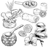 Set of spa and Beauty care sketch, organic products Stock Image