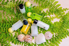 A set of Spa cosmetics with cockleshells. Small banks with cream in a fern, Spa Royalty Free Stock Photos