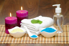 Set for spa with natural ingredients. body Massage Royalty Free Stock Photos