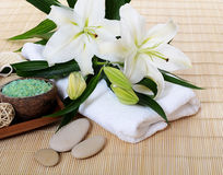 Set for spa-procedures on bamboo rug Royalty Free Stock Image