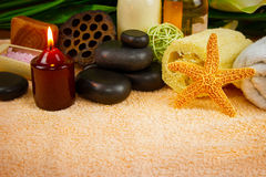 Set for spa-procedures Stock Photography