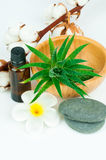 Set for spa treatment Royalty Free Stock Photos