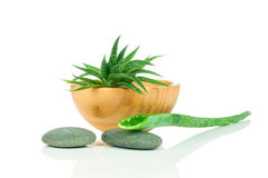Set for spa treatment Royalty Free Stock Photo