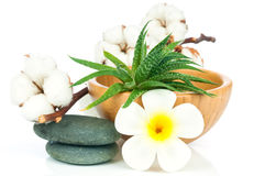 Set for spa treatment Stock Images
