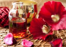 Set for spa treatments Royalty Free Stock Image