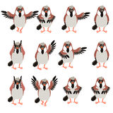 Set of Sparrow flat icons Royalty Free Stock Photo