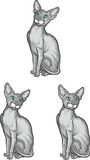 Set of sphynx cat. Vector illustration. Tattoo style. Stock Images