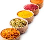 Set spice saffron,paprika,sumac,turmeric,green pepper Stock Photography