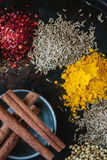 Set of spices - cinnamon, cloves, coriander, chili pepper and others over black background. Royalty Free Stock Photo