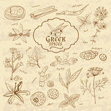 Set of spices cuisines Greece on old paper in Stock Photos