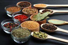 Set of spices royalty free stock image