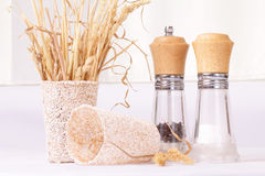 Set for spices and dry grass Stock Photos