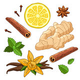 Set spices of ginger, lemon, vanilla, mint, cinnamon and cloves Stock Photography