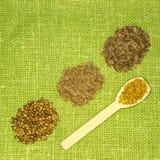 Set of spices on green leaf. Korendr, cumin, fennel, fenugreek Royalty Free Stock Photos