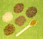 Set of spices on green leaf Stock Photography
