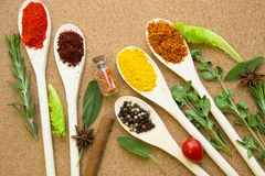 Set of spices and herbs on a corkwood. Cooking hot spicy meal. Set of different spices on wooden spoons with fresh herbs, clovess and cinnamon sticks on corkwood Stock Photos