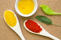 Set of spices and herbs on a corkwood. Cooking hot spicy meal. Dry red pepper and curcuma in wooden spoons and bowl with fresh herbs and on a corkwood background Royalty Free Stock Photos
