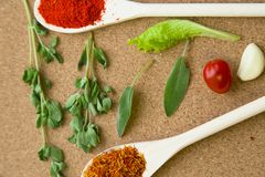 Set of spices and herbs on a corkwood. Cooking hot spicy meal. Dry spices in two wooden spoons, fresh herbs, cherry tomato and garlic,corkwood background, top Stock Photos