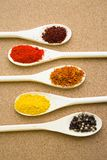 Set of spices and herbs on a corkwood. Cooking hot spicy meal. A set of four different spices in wooden spoons, corkwood background, top view Royalty Free Stock Image