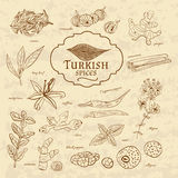Set of spices and herbs cuisines Turkey on old Stock Photography