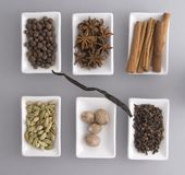 Set of spices. Isolated on grey. Stock Photos