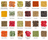 Set of spices isolated on white Royalty Free Stock Photos