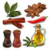 Set of spices isolated on white background. Image of ingredients for a cookbook. Vector illustration. Set of spices isolated on white background. Image of Stock Images