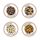 Set of spices labels. 100 organic. collection Royalty Free Stock Image