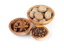 Set of spices with nutmeg anise and cloves Royalty Free Stock Photography
