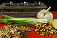 Set of spices and seasonings with green onion on red table top Stock Photos