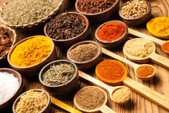 A set of spices Royalty Free Stock Photos