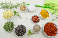 Set of spices in shiny bowls with pen and paper for writing reci Royalty Free Stock Images