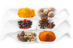 Set of spices in the spoons Stock Images
