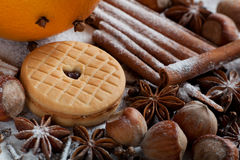 Set of spices, star anise, cinnamon and cloves Stock Image