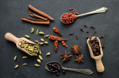 Set of spices Royalty Free Stock Images