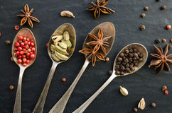 Set of spices Stock Images