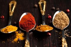 Set of spices in teaspoons Stock Image