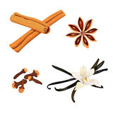 Set of spices. vanilla flower and pods, cloves, star anise, cinnamon Stock Photo