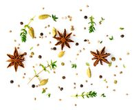 Set of spices on white background, top view. aromatic seasonings. With anise and cardamom Stock Photography