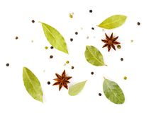 Set of spices on white background, top view. Seasonings for meat. Broth Stock Image