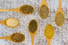 Set of spices on white leaf. Koreandr, cumin, fennel, fenugreek, sesame Royalty Free Stock Photos