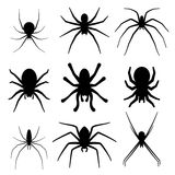 Set of spider silhouette vector icon. Top view Stock Photos