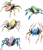 Set of spider tattoos Stock Photo