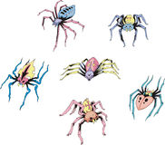 Set of spider tattoos Royalty Free Stock Photos